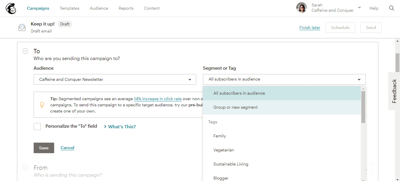 A screenshot of Mailchimp's send page with dropdown menu open for Segment or Tag